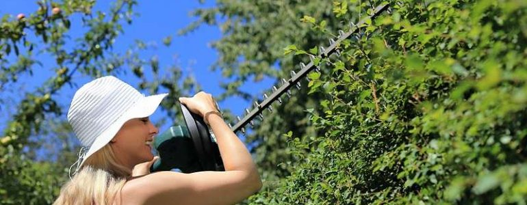 We review the best cordless hedge trimmers on the UK market today