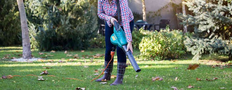 Reviews of some of the best garden vacuum / leaf blowers on the UK market today.